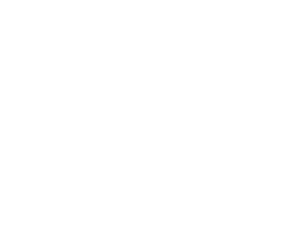 UNFCC Climate Neutral Now